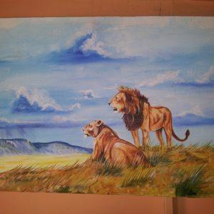 nature-lion9